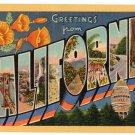 CALIFORNIA large letter linen postcard Teich