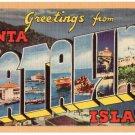 SANTA CATALINA ISLAND, California large letter linen postcard Longshaw
