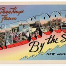 WILDWOOD BY-THE-SEA, New Jersey large letter linen postcard Tichnor
