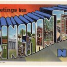 BINGHAMTON, New York large letter linen postcard Curt Teich