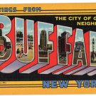 BUFFALO, New York large letter linen postcard Teich