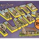 WHITE PLAINS, New York large letter linen postcard Teich
