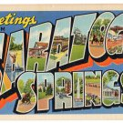 SARATOGA SPRINGS, New York large letter linen postcard Teich