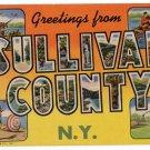 SULLIVAN COUNTY, New York large letter linen postcard Teich