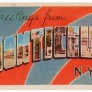 MONTICELLO, New York large letter linen postcard Dexter