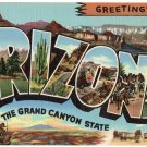 ARIZONA large letter linen postcard Teich