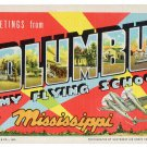 COLUMBUS ARMY FLYING SCHOOL, Mississippi large letter linen postcard Teich