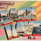 BEACH HAVEN, New Jersey large letter linen postcard Tichnor