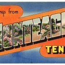 MONTEAGLE, Tennessee large letter linen postcard Colourpicture