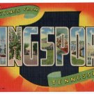 KINGSPORT, Tennessee large letter linen postcard Teich