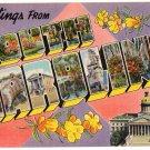 SOUTH CAROLINA large letter linen postcard Colourpicture