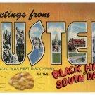 CUSTER, South Dakota large letter linen postcard Teich