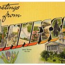 TENNESSEE large letter linen postcard Tichnor