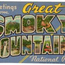 GREAT SMOKY MOUNTAINS, Tennessee large letter linen postcard Teich