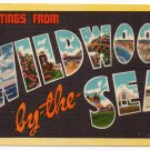 WILDWOOD BY-THE-SEA, New Jersey large letter linen postcard Colourpicture