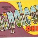 NAPOLEON, Ohio large letter postcard Teich