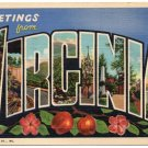 VIRGINIA large letter linen postcard Teich