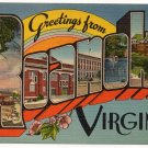ROANOKE, Virginia large letter linen postcard Eastern Photo