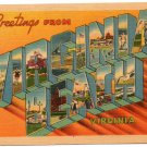VIRGINIA BEACH, Virginia large letter linen postcard Metropolitan