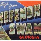 OKEFENOKEE SWAMP, Georgia large letter linen postcard Teich
