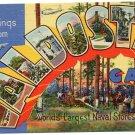 VALDOSTA, Georgia large letter linen postcard Teich