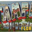TAMPA, Florida large letter linen postcard Teich
