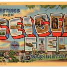 GEIGER FIELD, Washington large letter linen postcard Teich