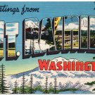 MT. RAINER, Washington large letter linen postcard Colourpicture