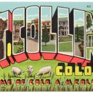 FT. COLLINS, Colorado large letter linen postcard Teich