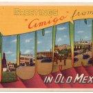 TIJUANA, Mexico large letter linen postcard