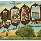 ALBANY, Georgia large letter linen postcard Teich