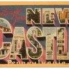NEW CASTLE, Pennsylvania large letter linen postcard Dexter