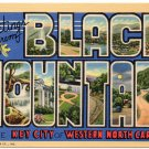 BLACK MOUNTAIN, North Carolina large letter linen postcard Teich