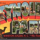 REYNOLDS PARK, North Carolina large letter linen postcard Teich