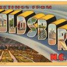 GOLDSBORO, North Carolina large letter linen postcard Teich