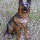 German Shepherd  Dog Figurine  7""