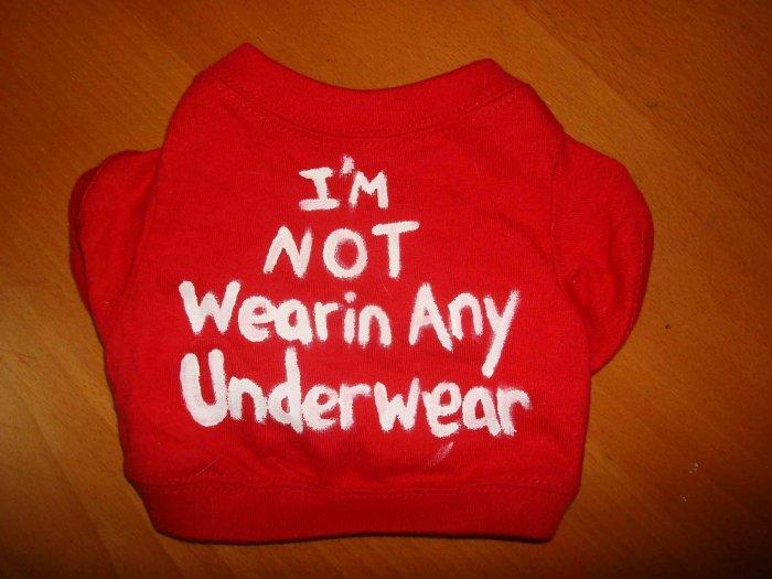 'im not wearing any underwear' handmade shirt