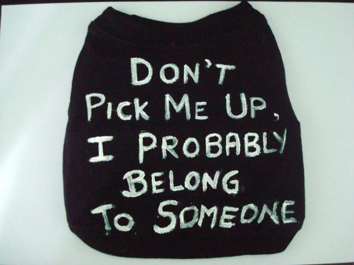'Don't pick me up, i probably belong to someone.' hand made shirt
