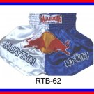 RAJA Muaythai boxing shorts RTB-62
