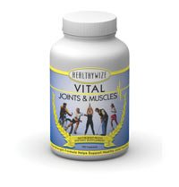 Vital Joints and Muscles