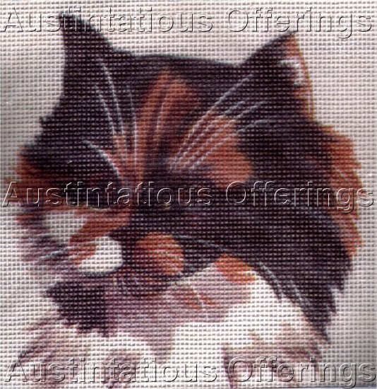 NEEDLEPOINT KIT LONG HAIRED WHITE & BROWN KITTEN