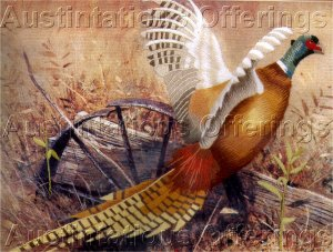 RARE HUNTING WILD GAME  ROBERT ABBETT AUTUMN PHEASANT CREWEL EMBROIDERY KIT