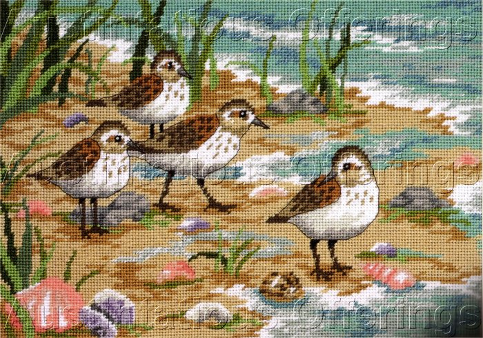 RARE SEASIDE BEACHSCAPE NEEDLEPOINT KIT SANDPIPER FAMILY