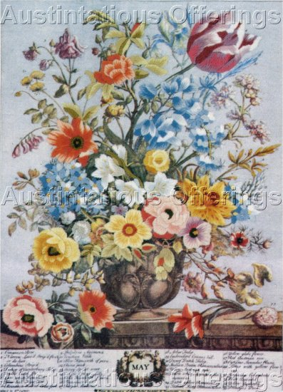 RARE FURBER REPRODUCTION BOTANICAL SERIES PLATE  CREWEL EMBROIDERY KIT HORTICULTURAL INTEREST