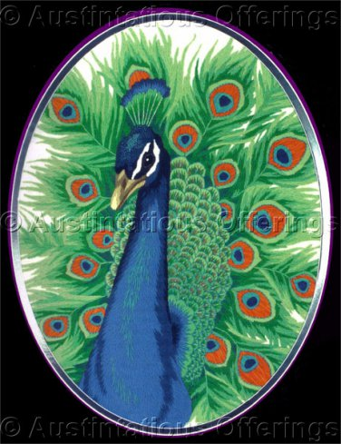 Rare Henderson Wildlife Art Repro Male Peafowl Crewel Embroidery Kit Indian Peacock Williams
