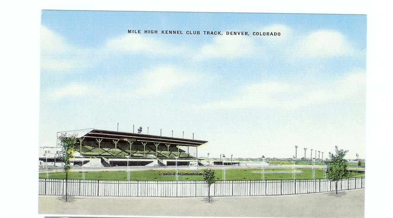 Mile High Kennel Club Track Denver Colorado Postcard unused Linen