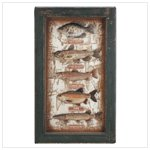 Freshwater Fish Shadow Box 33936