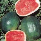 Black Diamond Watermelon- 60