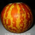 Tigger Melon Seeds- 30