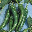 Big Jim Pepper Seeds (Bulk)- 100